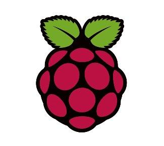 berrypi logo